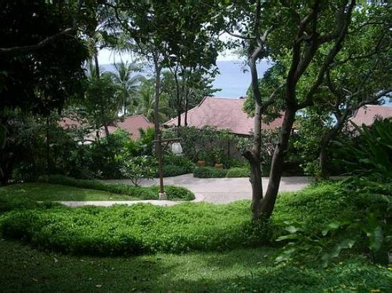 Pimalai Resort and Spa: area in Pimalai