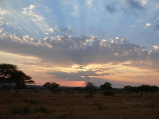 Tarangire National Park, Tanzania: Beautiful sunset at Tarangire Nat. Park