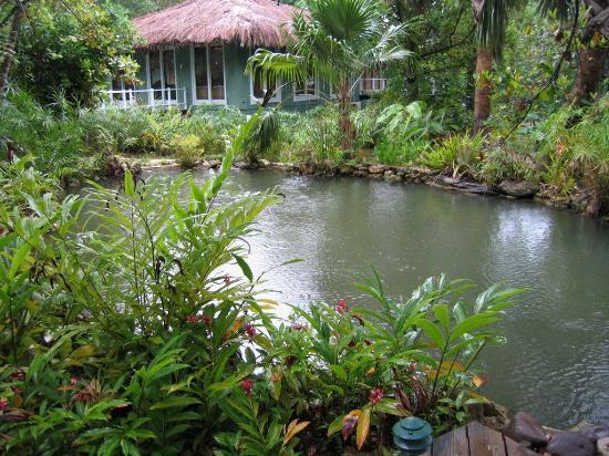 A Small Koi Fish Pond In The Gardens Picture Of Couples