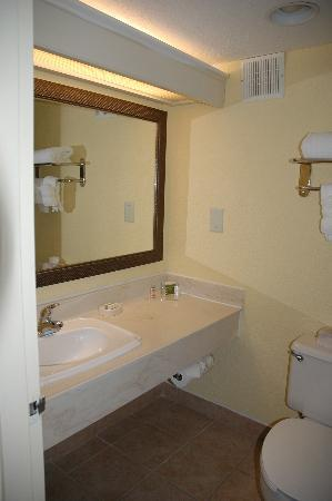 DoubleTree by Hilton Hotel Cocoa Beach Oceanfront: Bathroom (2)