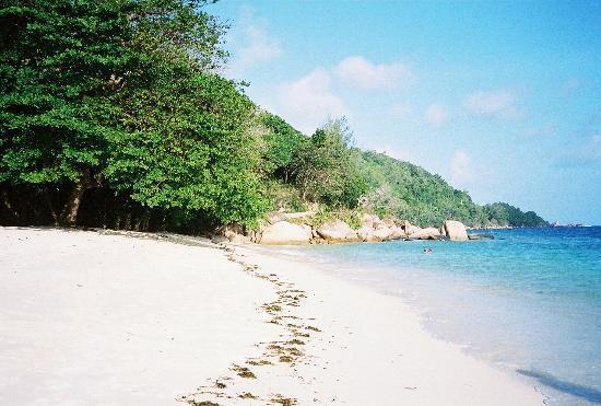 Coco de Mer - Black Parrot Suites: Beach to the left of resort