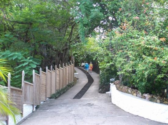 Anse Chastanet: The steps up to our room