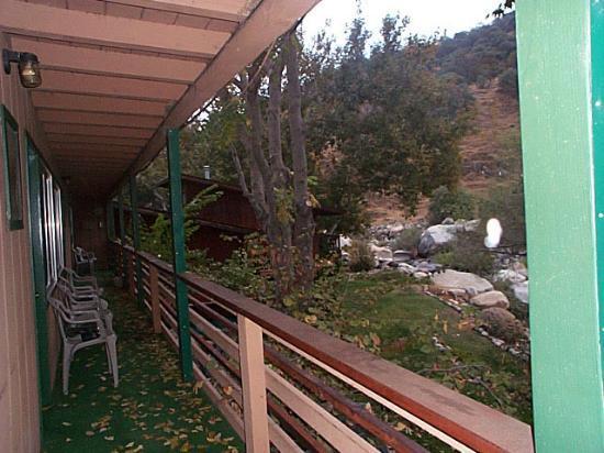 Buckeye Tree Lodge: View from the veranda