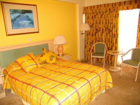 Arkin Palm Beach Hotel: The room