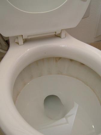 Sierra Lodge: Toilet