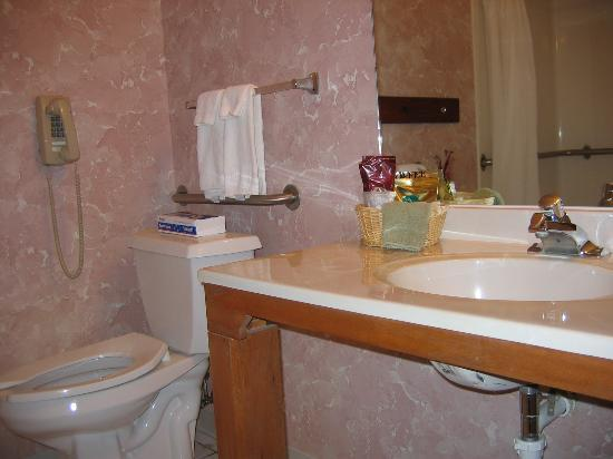 New Victorian Inn & Suites York: Bathroom