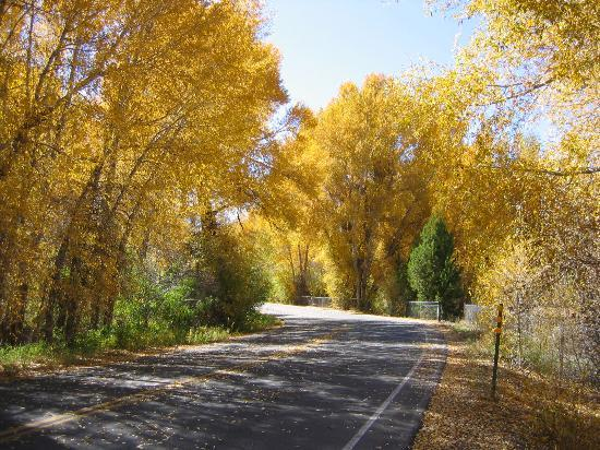 Autumn in Gunnison