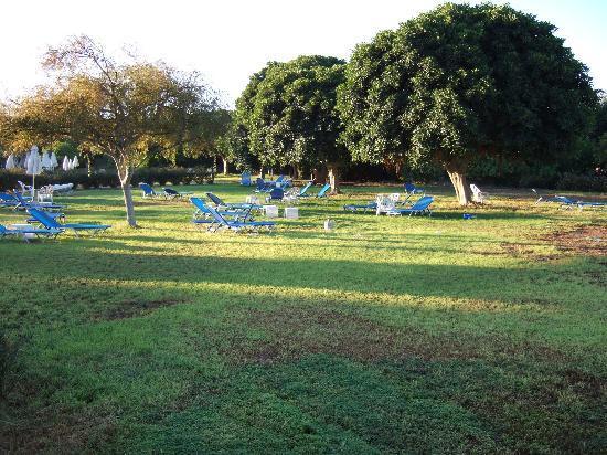 Avanti Hotel: Large gardens