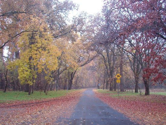 Bidwell Park: Path of Colors