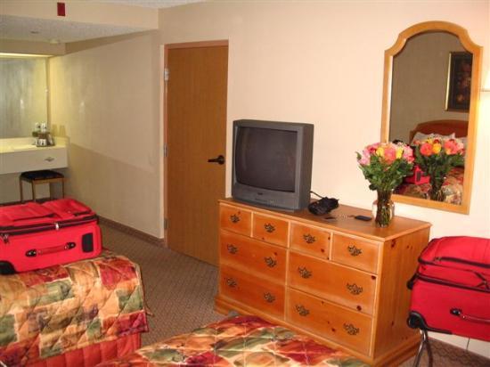 Hampton Inn & Suites Williamsburg-Richmond Rd.: Bedroom & vanity area