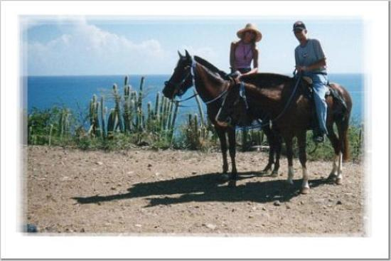 Royal Palm Beach Resort: Horseback riding with Lucky Stables