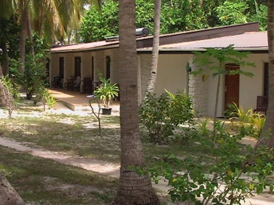 Garden view rooms lots of coconut trees well shaded for Garden room reviews