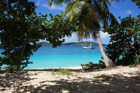The Westin St John Resort Villas Honeymoon Beach