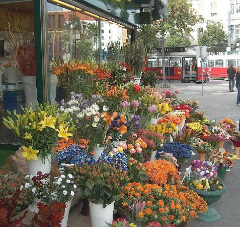 Schweizer Pension: Flower Market