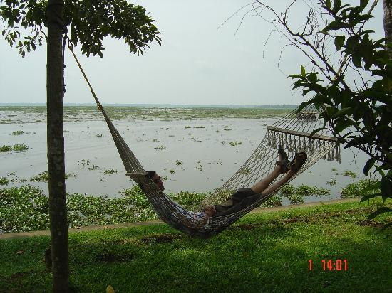Coconut Lagoon: On the hammock