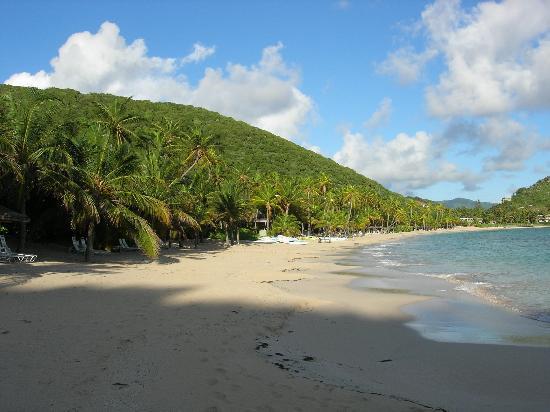 Peter Island Resort and Spa : Beautiful Beach!