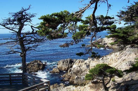 Last-minute-Hotels in Monterey