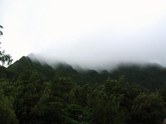 Oahu Photo