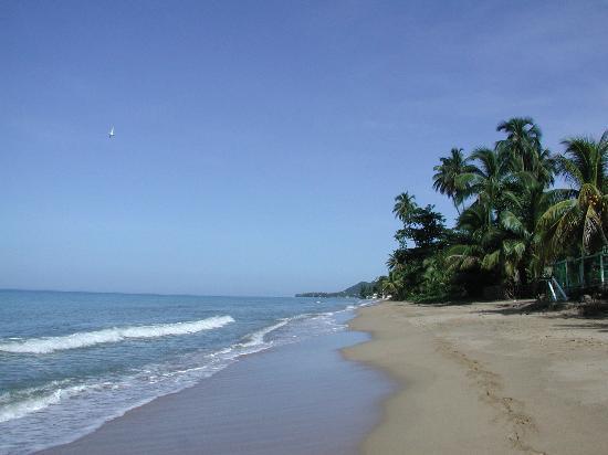Parador Villa Antonio: Villa Antonio beach