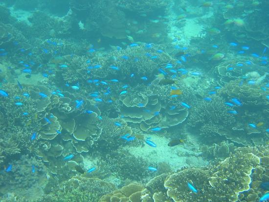 Boracay, Philippines: Breathtaking