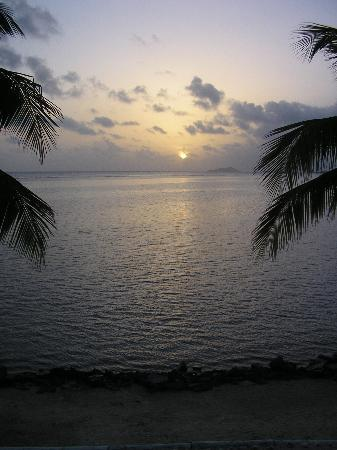 Colony Cove Beach Resort: another sunrise pic w/ buck island view