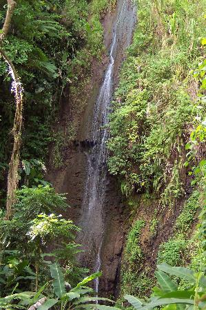 Papillote Wilderness Retreat: Papillote's own waterfall