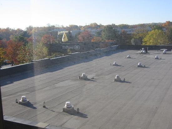 Hilton Parsippany: view 2
