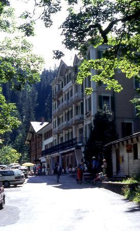 Rosenlaui Hotel Photo