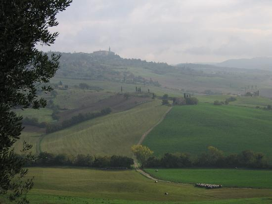 Agriturismo Cretaiole di Luciano Moricciani: The view from Cretaiole: Pienza and hills of the Val d'Orcia