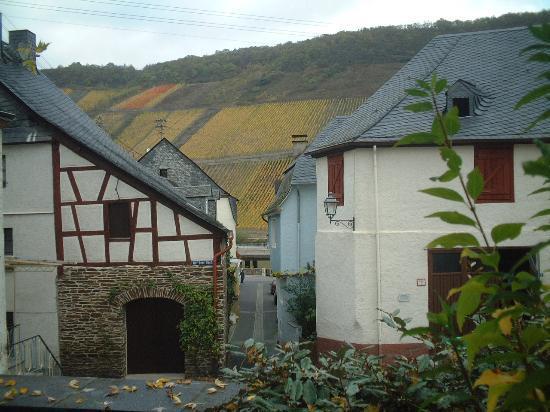 Cafe im Hamm: Mosel Village
