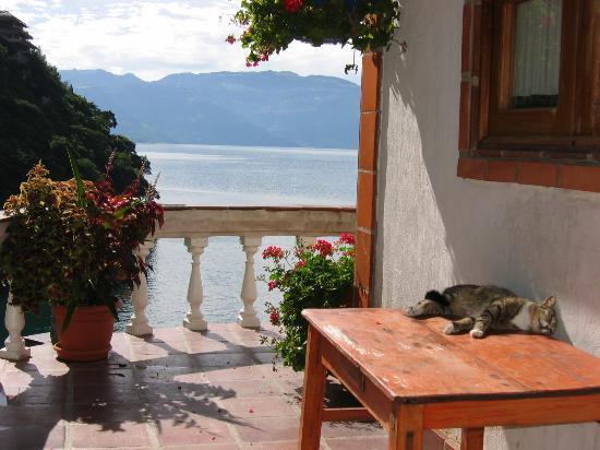 La Casa del Mundo Hotel: Senor Gato