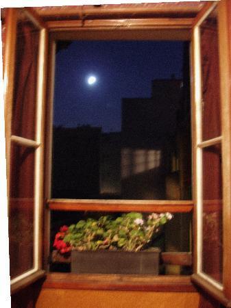 Hotel Stella: Window