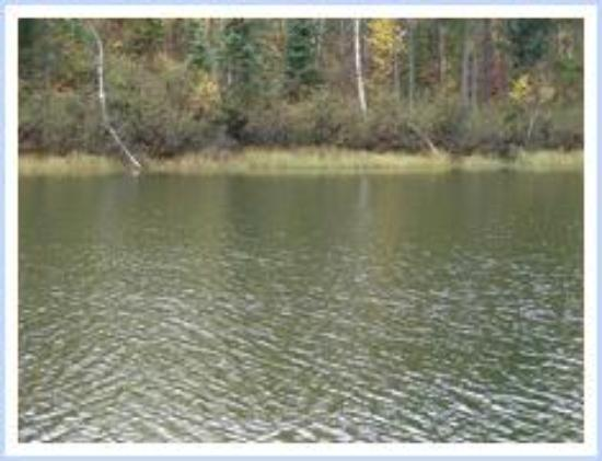 Kettle Lakes Provincial Park : Green Lake