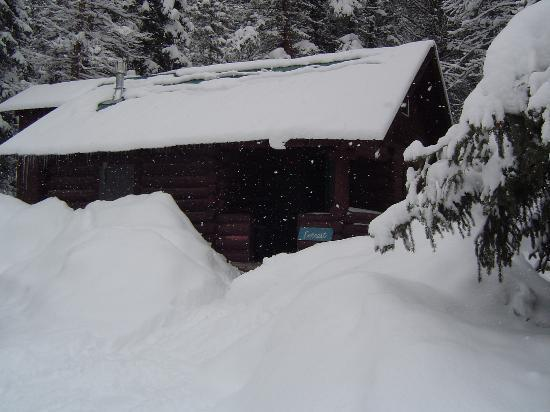 Pioneer Guest Cabins: Everest in the Snow