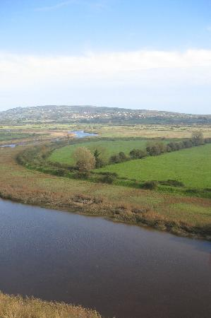 Bunratty area (view from castle)