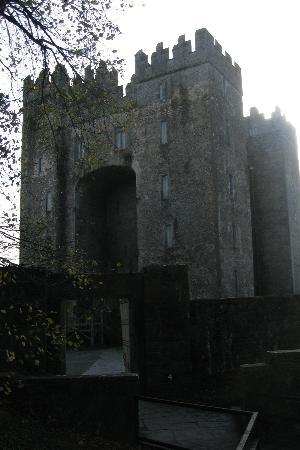 Bunratty Meadows Bed and Breakfast: Bunratty Castle