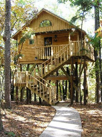 Treehouse cottages updated 2017 campground reviews - Tree house plans for adults ...