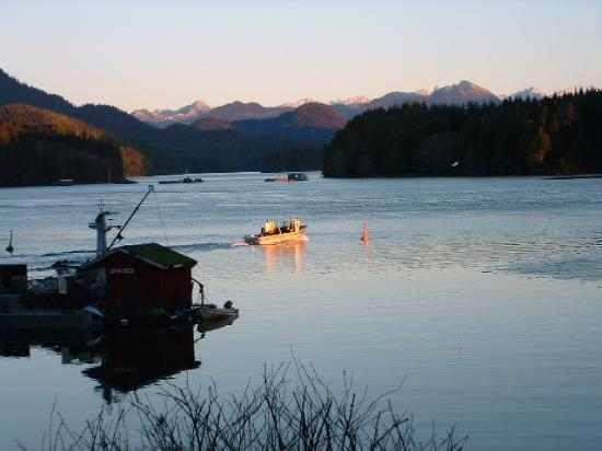 Tofino Inlet Cottages: view from deck