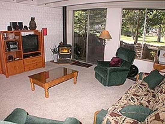 Tahoe Keys Resort : Mountain Living (room)