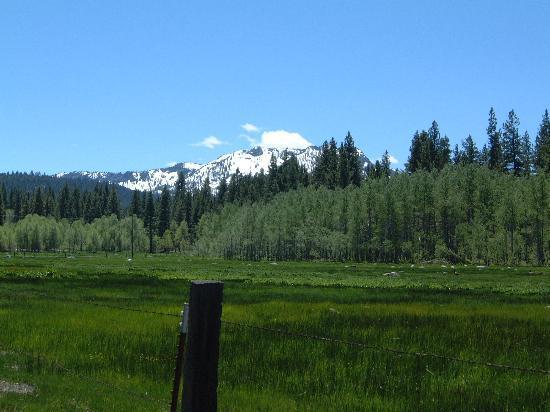 Tahoe Keys Resort : Hiking Five Minutes Away