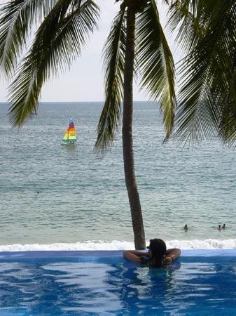 Catalina Beach Resort: Infinity pool