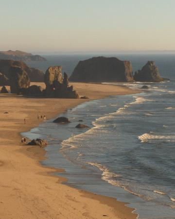 Bandon, Орегон: Oregon coast at Face Rock