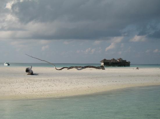 Gili Lankanfushi Maldives : sand bank