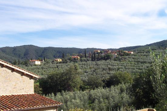 Casa Portagioia - Tuscany Bed and Breakfast: Another one