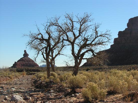 Mexican Hat, UT: Typical scene 3