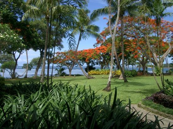 Shangri-La's Fijian Resort & Spa: View of the grounds