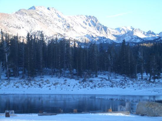 Mammoth Lakes, Californie : Horseshoe Lake, Nov 2005