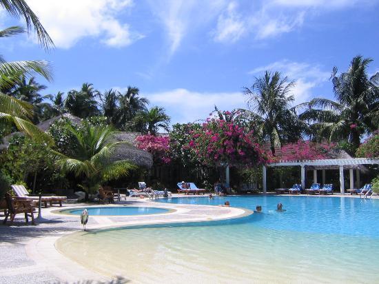 Kuramathi Island Resort: Pool