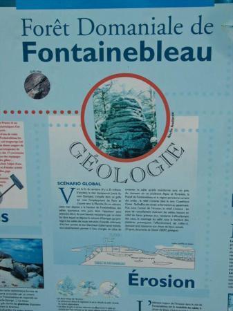Hôtel Le Richelieu: boulder park in Fountainebleau