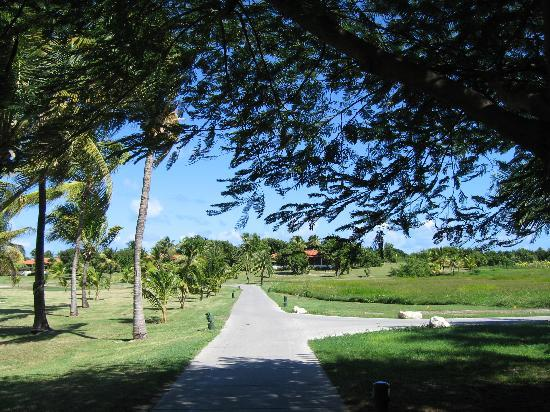 Jumby Bay, A Rosewood Resort : The island is kept like a garden!